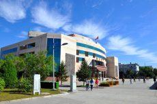 Yulin University
