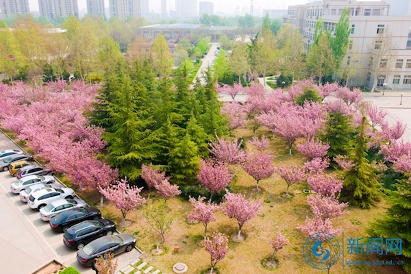 Shandong University of Technology